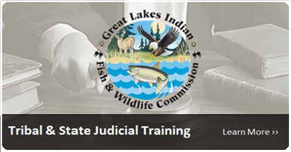 Tribal & State Judicial Training